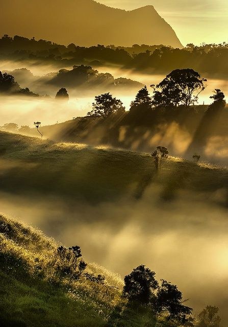 Shadows in the mist on the Atherton Tablelands, Queensland, Australia (by aycee_2000).
