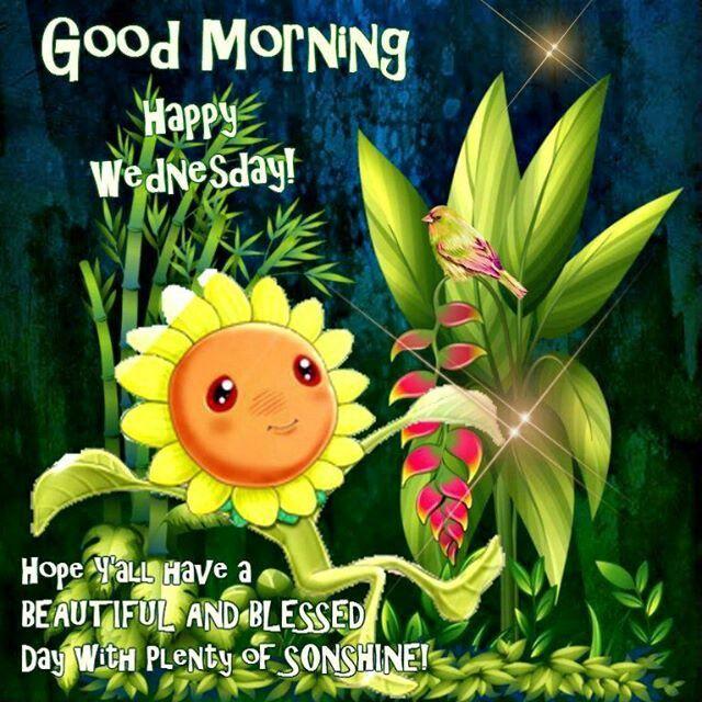 Good Morning Happy Wednesday Hope