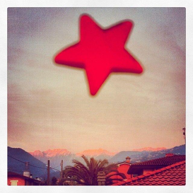 Stella Rossa. © Valentino Liberto #Natale #enrosadira