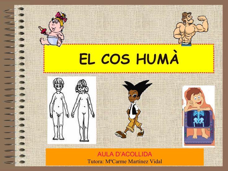 El Cos Humà by Irisat via slideshare
