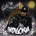 The Underachievers - Indigoism   - Free Mixtape Download or Stream it