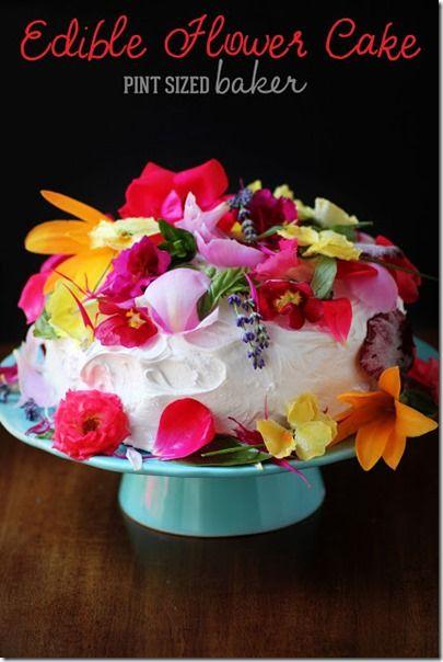 https://au.pinterest.com/ciully0127/edible-flowers/?lp=true