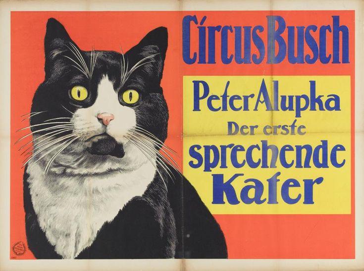 119 Beste Afbeeldingen Van Cats 17e Eeuw Commercial En Kat