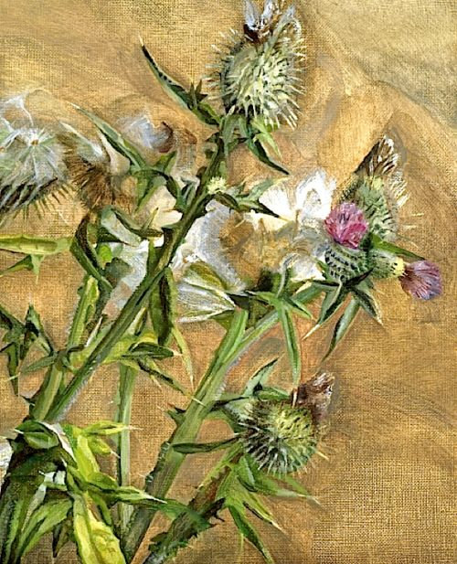 Thistle, Lucian Freud, 1967. I don't like most of his work, but this one I do.
