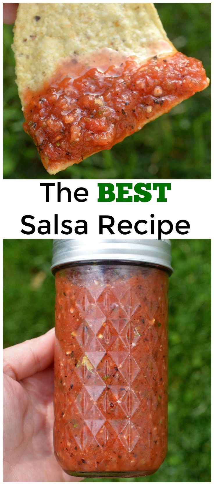The BEST Salsa Recipe - SO good, that you may just want to drink it!