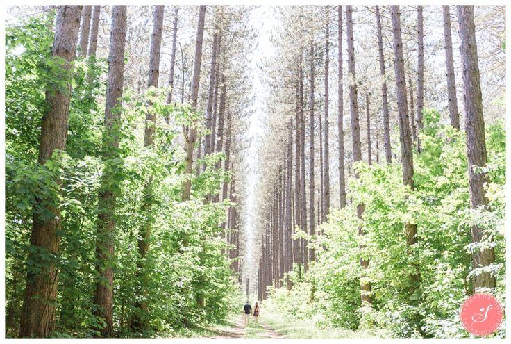 A Beautiful Nature Inspired Sault Ste Marie Engagement Hiawartha Highlands    © 2016 Samantha Ong Photography www.samanthaongphoto.com #samanthaongphoto #weddingphotography #weddings #weddingphotos #saultstemarie