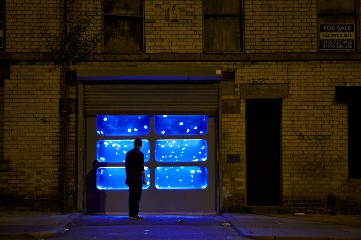 """Este galpão abandonado, em Liverpool, está """"cheio"""" de águas vivas."""