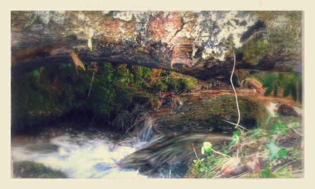 Babbling brook in Dartmoor