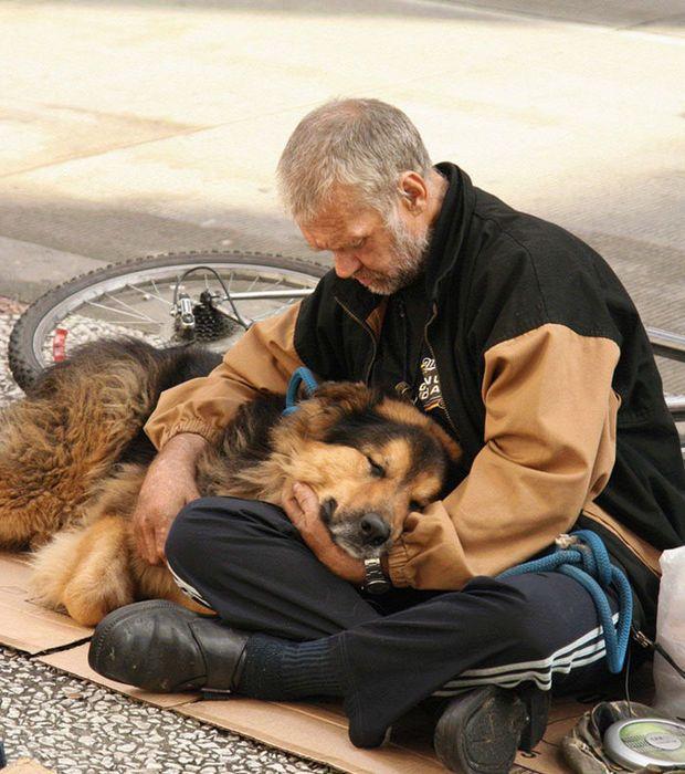 Un chien qui dort dans les bras de son maître