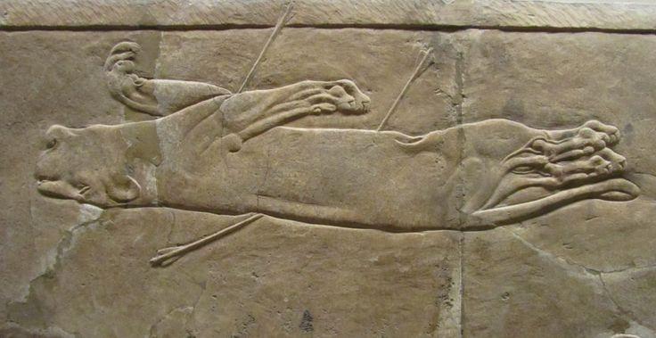 Охота на львов. Рельеф из дворца в Ниневии. Ок. 640 г. до н.э. British museum