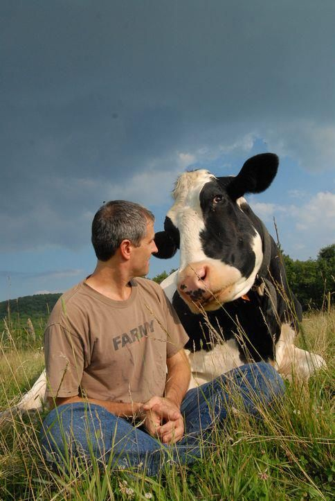 Farm Sanctuary Co-Founder Gene Baur spends some time with his friend Opie, whom he rescued from a factory farm dead pile over 16 years ago.