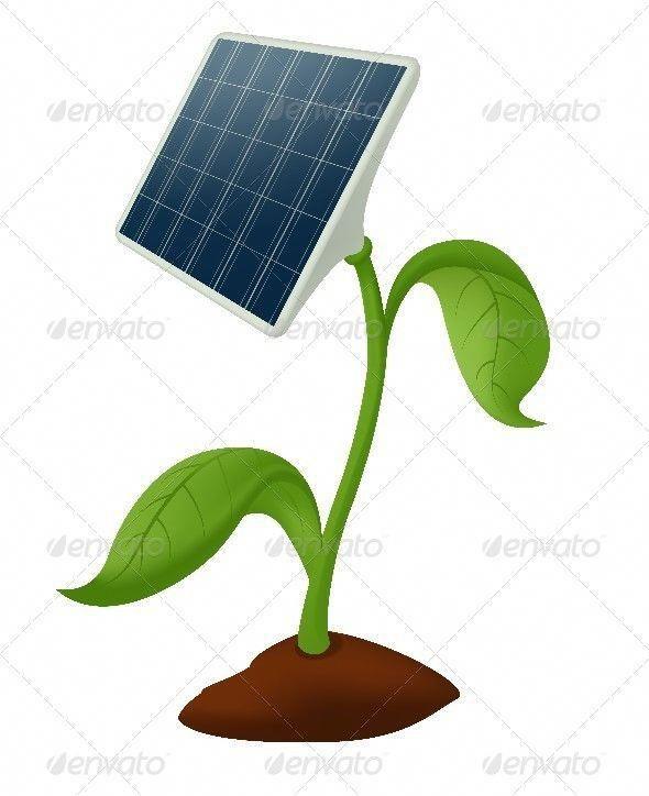 Plant Solar Battery Energia Solar Calentador Solar Para Alberca Energia Renovable