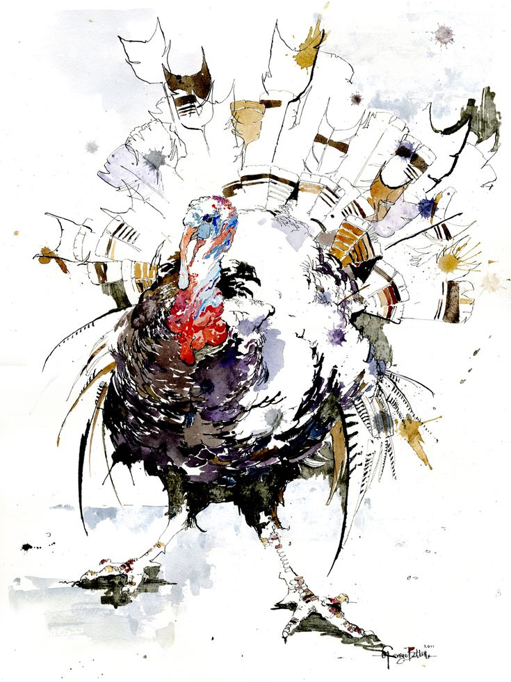 7 Bird Forms Sketchbook | George Butler Great pen & wash study