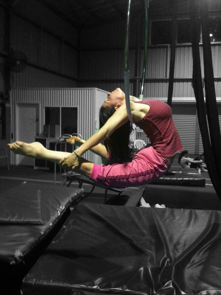 Magic Under Orton Park Oak >> 267 best images about Aerial: Lyra & Trapeze on Pinterest | Strength, Aerial silks and Carnivals