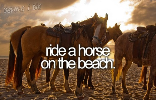 preferably white or black horse at sunset :)