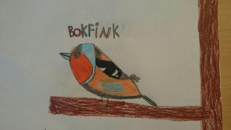Det er gøy å kunne noen fuglearter når vi er på tur i skogen
