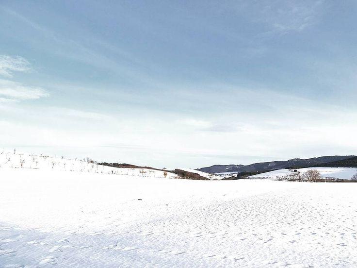 Ein Schneebild vom Wochenende...  Weil es einfach großartig war so richtig spontan zu sein voll kindlicher Freude die Abhänge herunter zu sausen bei Sonne durch den Schnee zu stapfen und die roten Wangen meiner aufgeregten glücklichen und müden Minis zu küssen...  . Snowy days are happy days. . . #happylife #enjoylife #lifeisgood #lifeisbeautiful #thegoodlife #theartofslowliving #finditliveit #thehappynow #thatsdarling #makethemostofnow #makingmemories #memorymaking #holdthemoments #thankful…