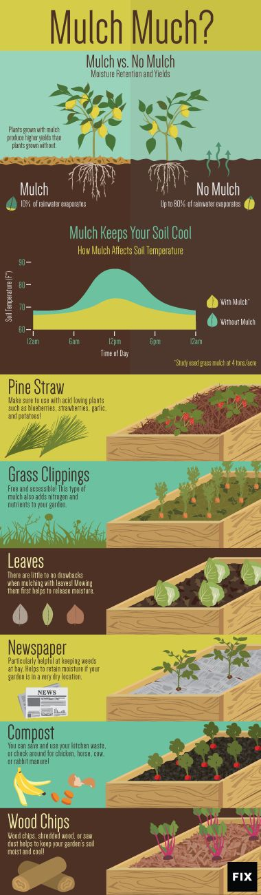 It's hard to know how much mulch (say that three times fast!) you need in your garden, but this helpful chart from Fix.com will show you when to break out the wood chips, leaves, or compost.