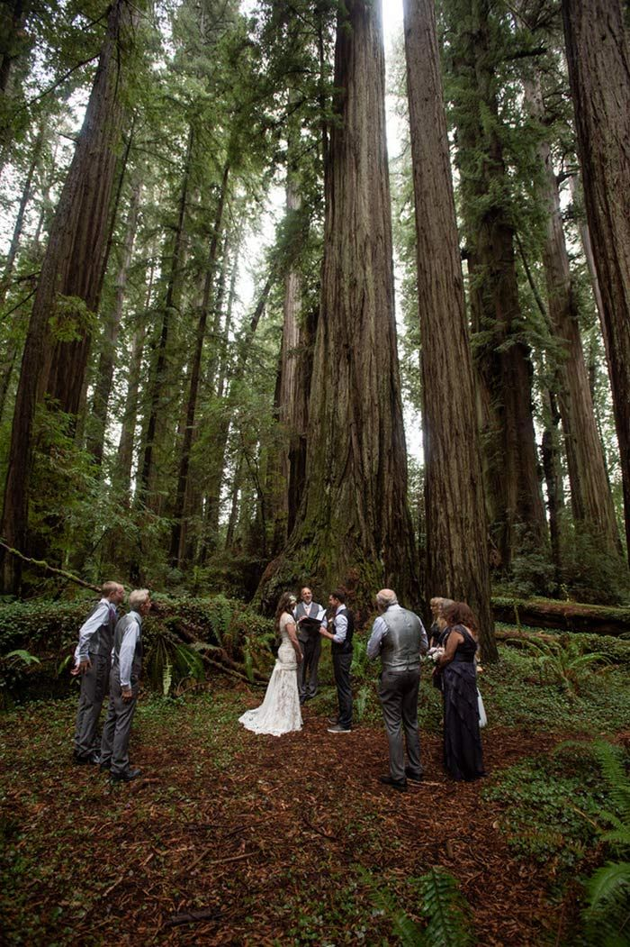 Ceremony among the majestic redwoods of Jedediah State Park - 9 Guests plus 1 Chihuahua. Photos by Dennis of Viera Photography