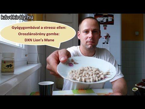 dxnproducts.com: Gyógygombával a stressz ellen: Oroszlánsörény gomb...