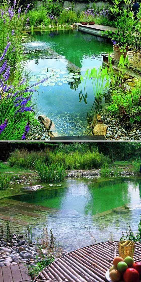 17 Family Natural Swimming Pools You Want To Jump Into… – Kai