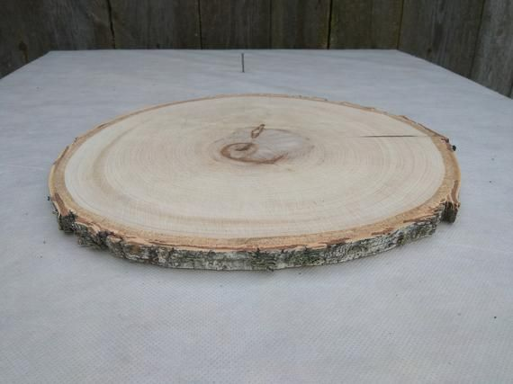 12 13 Inch Wood Slice Approx 12 13 Large Birch Wood Slice Wood Charger Plate Charger Birch Wood Coaster Birch Slice Birch Wood Cake Stand In 2020 Wood Slices Wood Slice Crafts Large Wood Slices