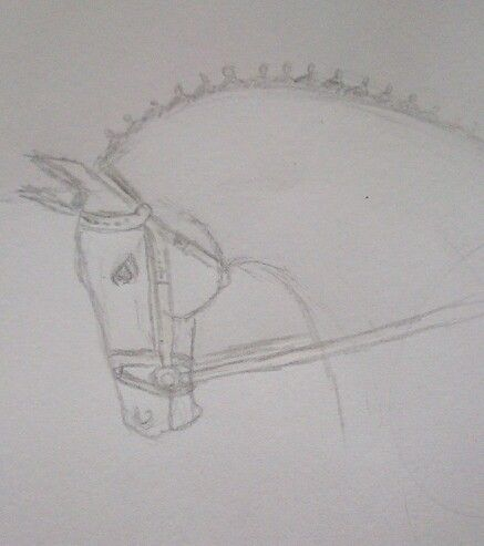 #horse #dressage #drawing