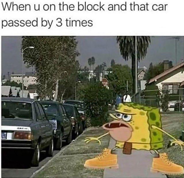 spongebob caveman meme | Funniest Caveman Spongebob Memes (10 Photos)