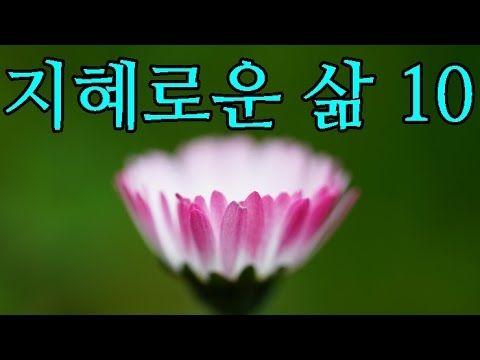명상의 말씀 - 지혜로운 삶 10 (53분)
