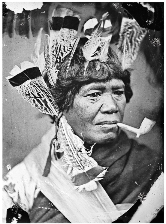 The Maori portraits of John McGarrigle www.nzgeographic.co.nz