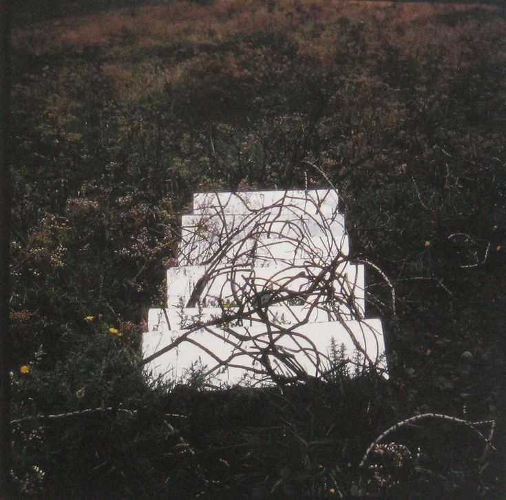 Robert Smithson, Mirror Displacement (Brambles), 1969, England, 35 mm Slide