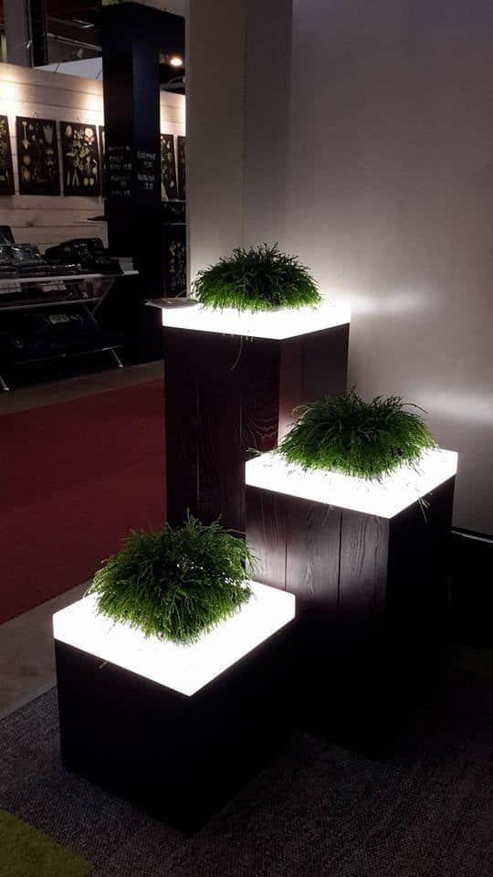 17 beleuchtete Pflanzgefäße: Wie man einen leuch…