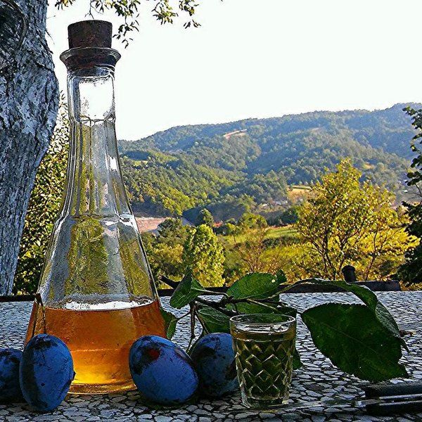 Rakija made from plum (sljivovica)