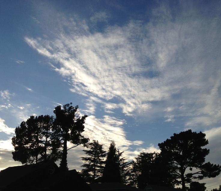 twilight in Oakland, California