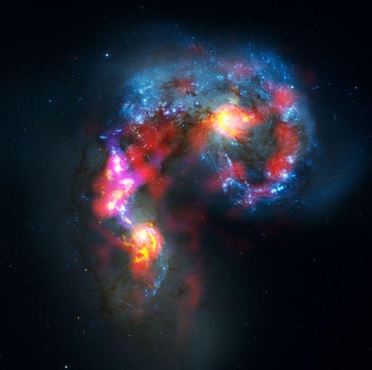 Les Galaxies Antennes, une composite des observations d'ALMA et de Hubble