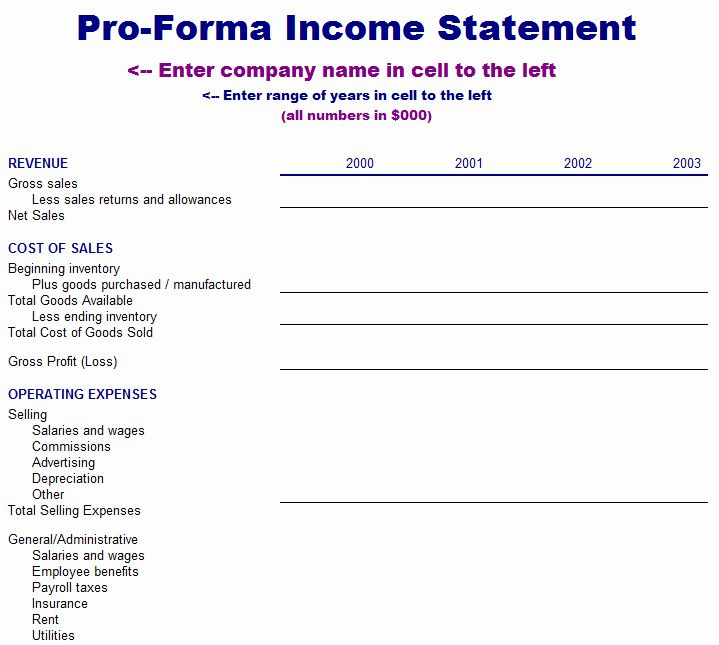 40 Pro Forma Income Statement Example With Images Income