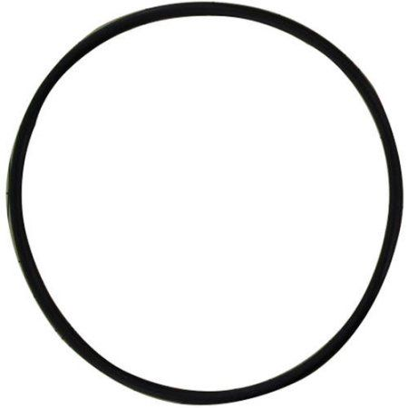 Pentek 151117 Viton O-Ring for All Natural Polypropylene Housings