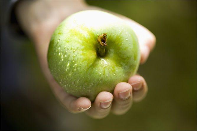 15 cibi sotto le 100 calorie -   UNA MELA (70 CALORIE) Sapete perché una al giorno toglie il medico di torno? Perché la mela è ricca di pectina, che aiuta a limitare i livelli di colesterolo e tiene sotto controllo l'appetito. Provate per credere e mangiatene una prima dei pasti: è un ottimo trucco per non esagerare a tavola!