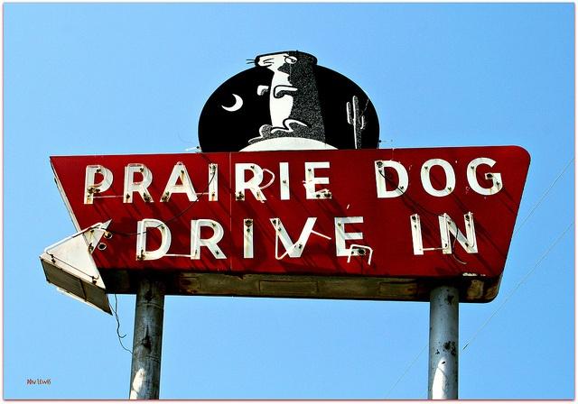 Prairie Dog Drive In - Grand Prairie, Texas - make the best hot dogs