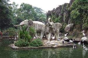 Jual Tiket Pesawat: Kebun Binatang Ragunan Jakarta Indonesia  Kebun Binatang Ragunan Jakarta terletak di Pasar Minggu, Jakarta Selatan. Ini adalah rumah bagi 4000 binatang dan 260 spesies, yang sebagian besar terancam punah di Indonesia dan seluruh dunia. Kebun Binatang ini memiliki koleksi yang cukup lengkap seperti Komodo, orang utan dan harimau. - See more at: http://tiketpesawatklaten.blogspot.com/2014/04/kebun-binatang-ragunan-jakarta-indonesia.html#sthash.M3b13TN0.dpuf