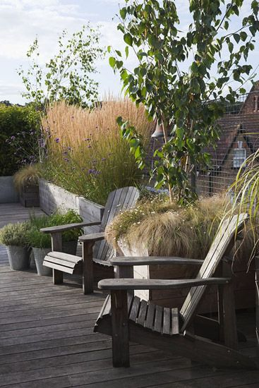 roof terrace with large wooden containers planted with grasses and underplanted with wild flowers