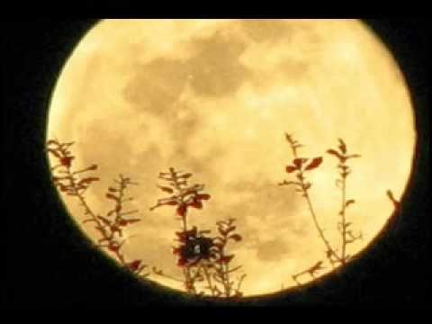 The Moon's a Harsh Mistress - Jimmy Webb