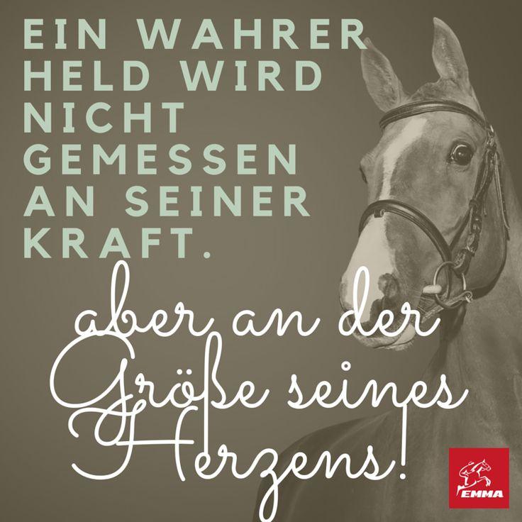 Pferdesprüche & Pferde Zubehör-emma-pferdefuttershop.de