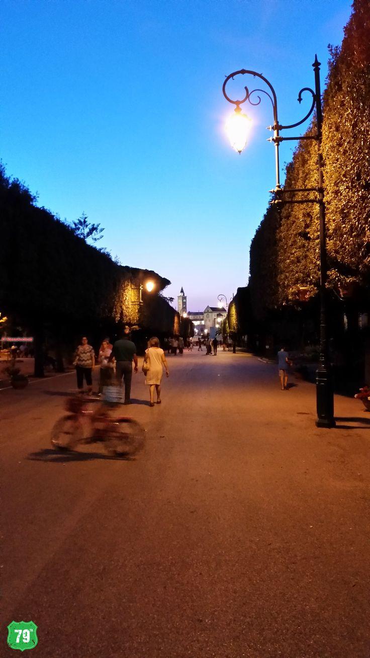#Puglia #RegionePuglia #Trani #Cattedrale #Italy #Italia #Travel #Viaggi #Cathedral #Church #Estate #Summer #Sunset #Tramonto #79thAvenue