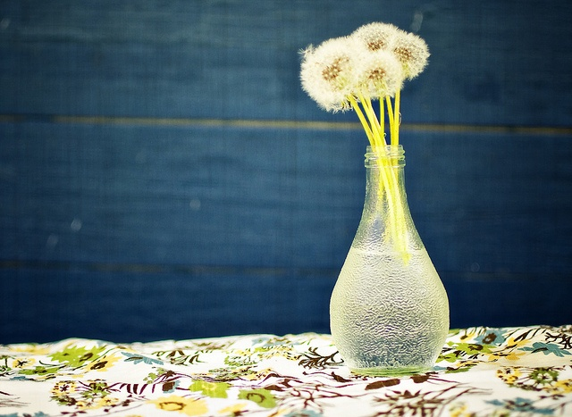 Orangina bottles make great vases by Kelly Russo Photography, via Flickr