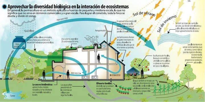 Infografía Arquitectura Bioclimática.