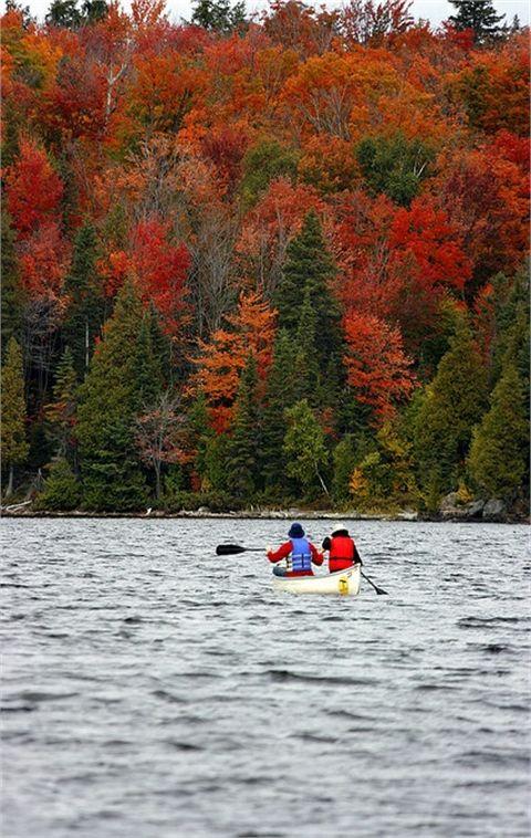 Fall colors in Algonquin Park, Ontario, Canada