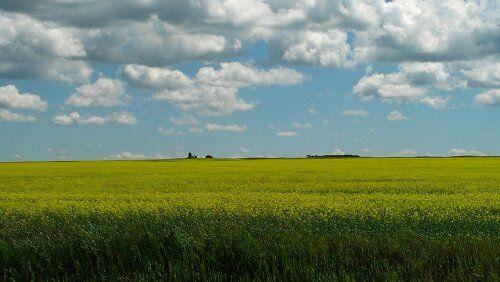 The Prairies in Saskatchewan, Canada