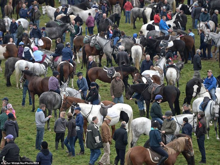 The Ballinasloe Horse Fair is held annually in Ballinasloe, the second largest town in Cou...