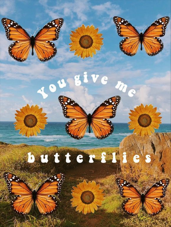 Butterfly Aesthetic Vsco Jennyjovega Images Aesthetic Iphone Wallpaper Butterfly Wallpaper Iphone Picture Collage Wall